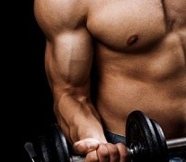 5 Of The Best Muscle Building Exercises For Beginners