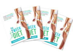 Brian Flatt's 2 Week Diet System – Our Full Review