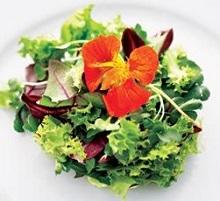 high matabolism diet recipes