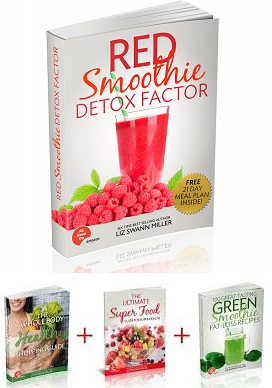 Red Smoothie Detox Factor System