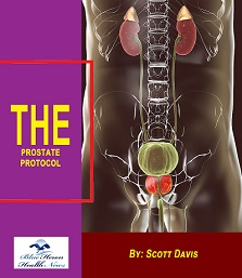 The Prostate Protocol
